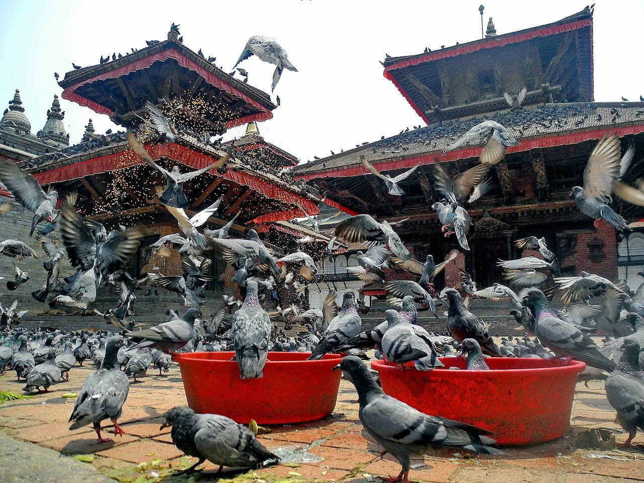 kathmandu-96564_1280