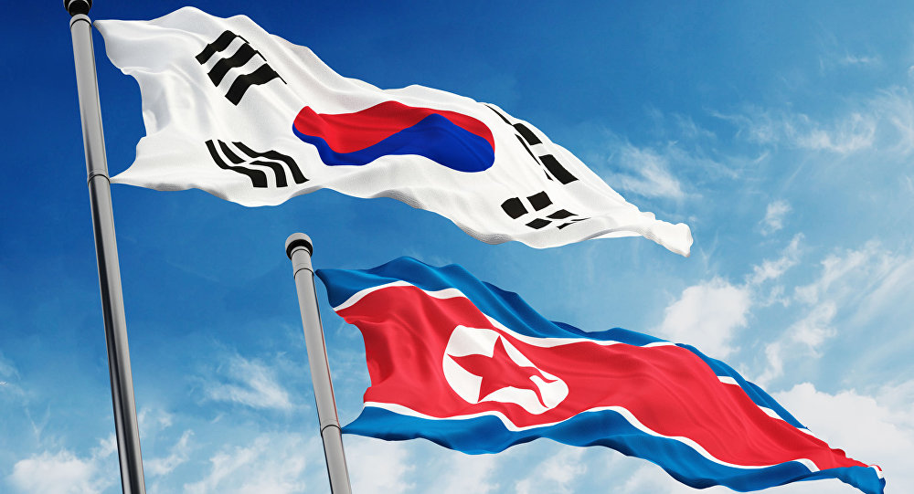 남한 북한 통일 태극기 인공기 397059 사진=Sputnik